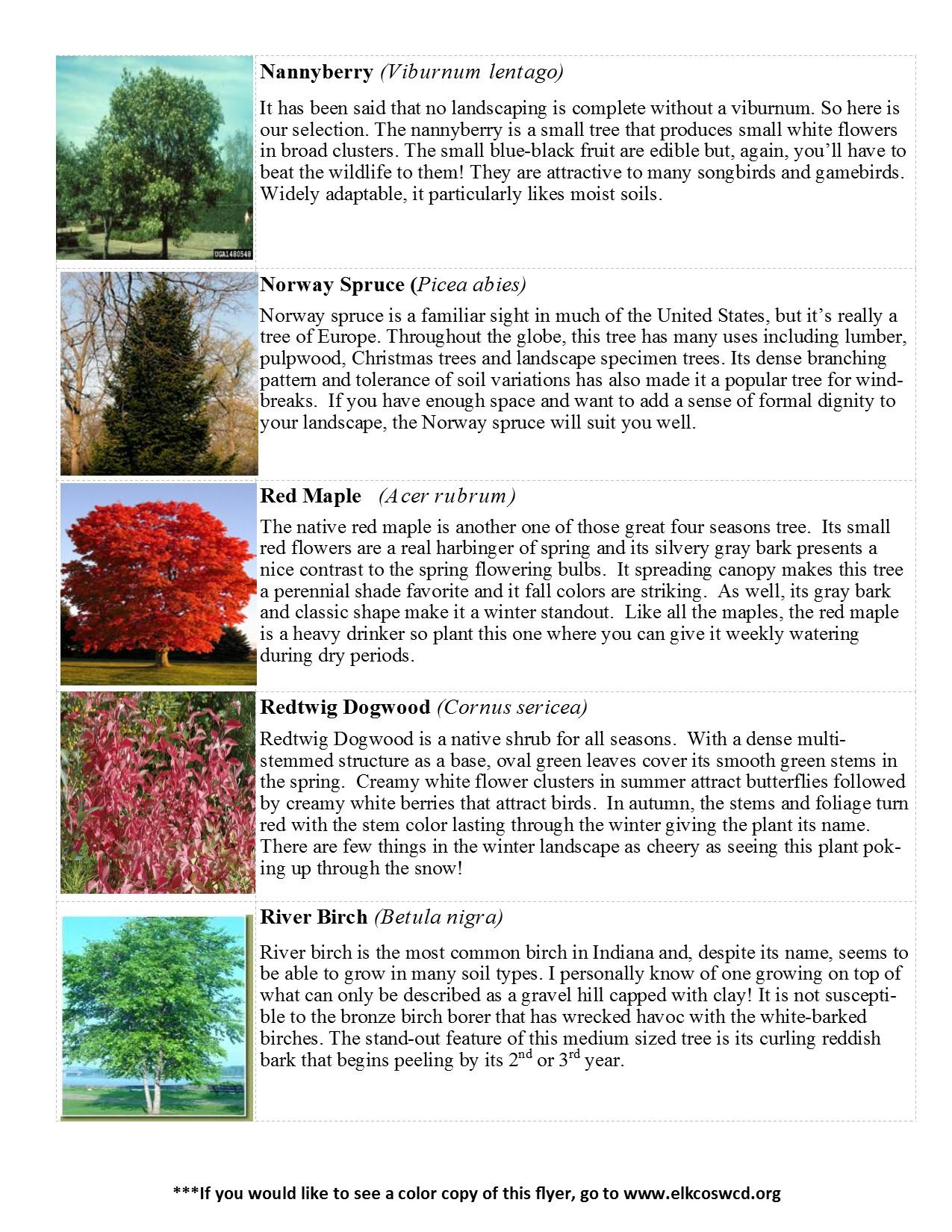 2017-tree-sale-species-list_2