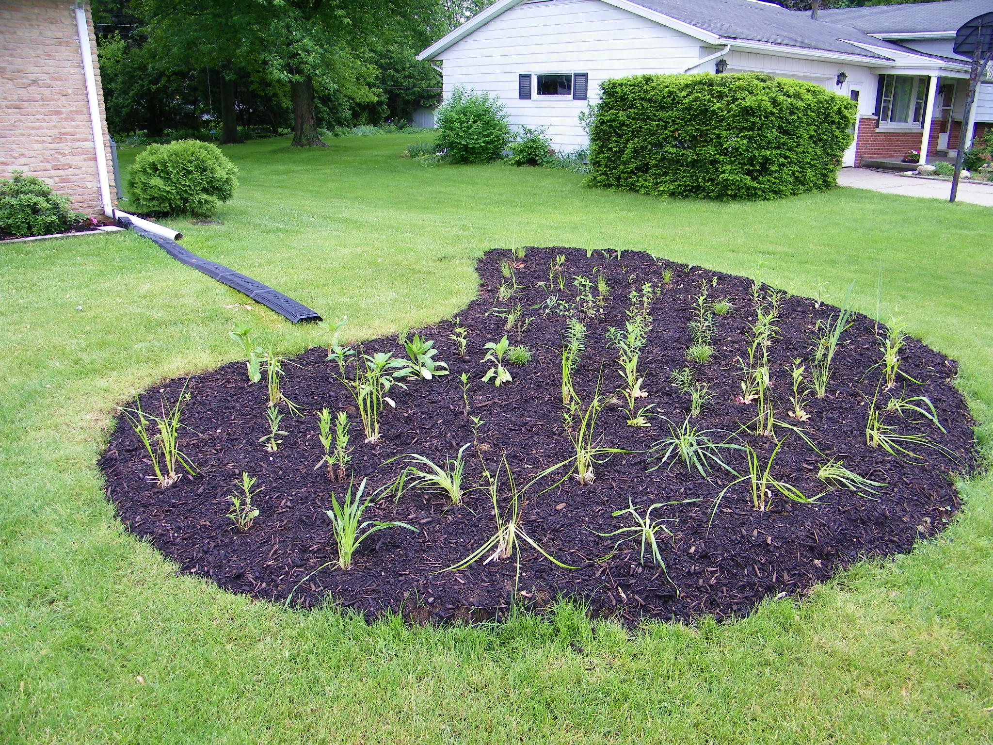 Rain gardens elkhart county soil and water conservation for Utility of soil